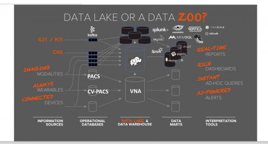 Data_Lake or Data_Zoo